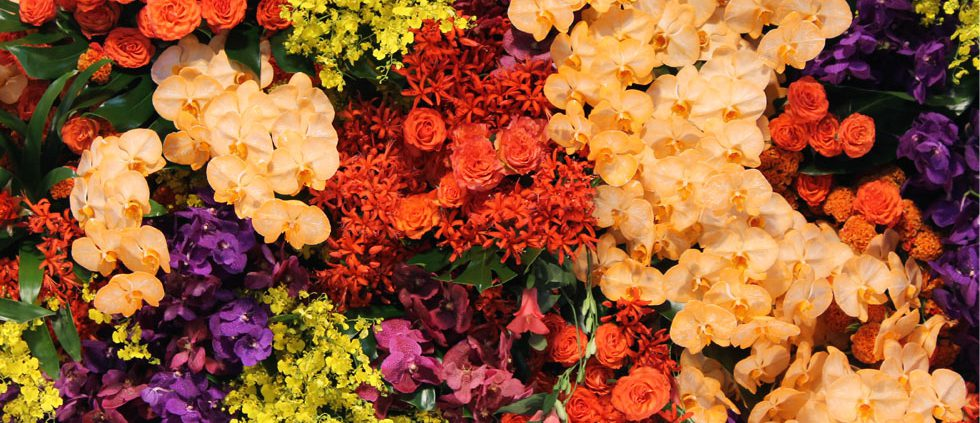 floristeria en barcelona