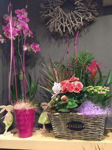 flores en la merce