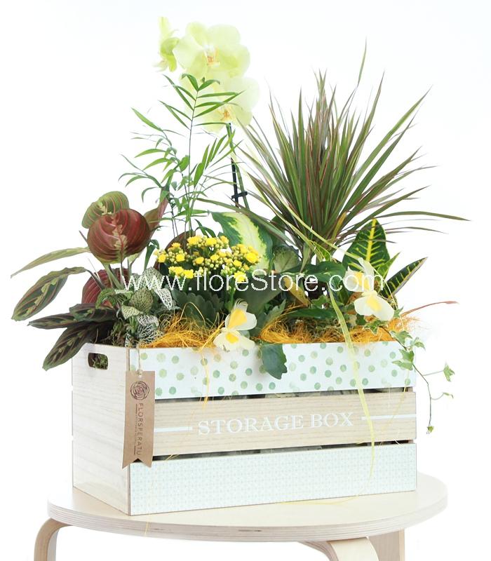tendencias de decoracion con plantas y flores