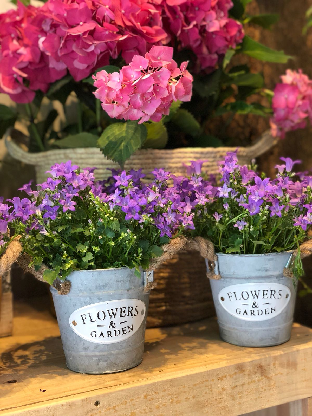 flores a domicilio en sabadell